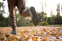 Close up view of man running on dried autumn leaves. Royalty Free Stock Photo