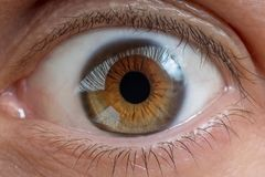 Close-up view on man`s eye. stock photo