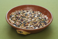 Close-up view of mixed legumes Royalty Free Stock Photos
