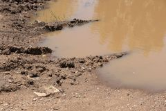 A close up view of a muddy puddle where a car`s tyre tracks are going thouhgh onto the other side of the sand and dirt royalty free stock photography