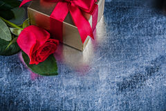 Close up view of natural red rose wrapped gift box Royalty Free Stock Images