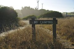 No Camping Sign on Wild Grass royalty free stock photo