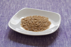 Close-up view of nutritional yeast Stock Image