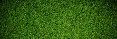 Free Close Up View Of Astro Turf Royalty Free Stock Image - 97939736