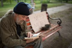 Close up view of old man reading while sitting on bench. stock photos