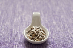 Close up view of organic Sunflower Seeds Stock Image