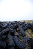 Close-up view of peat cuttings Royalty Free Stock Photo