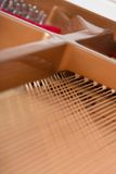 Close-up view of piano chords Stock Image