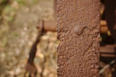 Close up view of piece of old corrosive metal. With softly blurred natural background royalty free stock photography