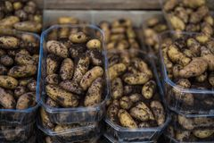 Close up view of pile of potatoes. In plastic boxes stock photos