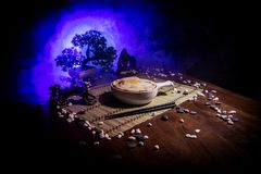 Close up view of plate with japanese food inside. Japan traditional food on wooden table with decoration of bonsai tree and moon o. N toned foggy background stock image
