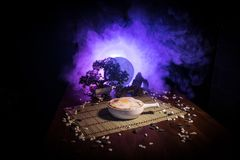 Close up view of plate with japanese food inside. Japan traditional food on wooden table with decoration of bonsai tree and moon o. N toned foggy background stock photography
