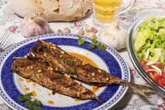 Wahoo grilled fish meal Royalty Free Stock Image