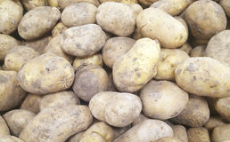 Close up view of potatoes at a market Stock Images