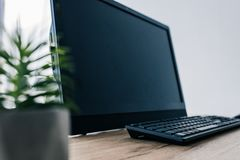 Close up view of potted plant and blank computer monitor and computer keyboard. At table stock image