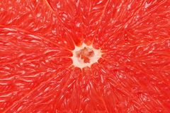 Close-up view on pulp of grapefruit Royalty Free Stock Images