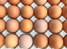 Close-up view of raw chicken eggs in box royalty free stock photos
