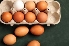 Close-up view of raw chicken eggs in box, egg white, egg brown on green background. stock photography