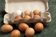 Close-up view of raw chicken eggs in grey box, egg white, brown egg on green background. royalty free stock image