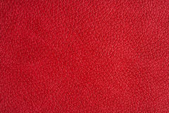 Close up view on red leather texture studio shot Royalty Free Stock Image