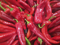 Close up view of red peppers at a market Stock Images