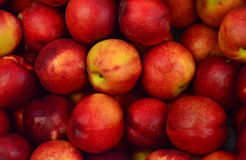 Close Up View of Red and Yellow Apple Stock Photography