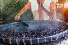 Close-up view of roasted coffee beans.  Stock Images