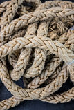 Close up view of a rope Stock Image