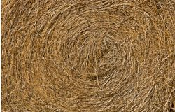 Close up view of a round hay bale Stock Photos