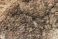 Close-up view of the salt flats in Salar de Uyuni stock image