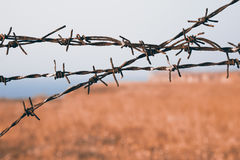 Close up view on sharp strands of barb wire Royalty Free Stock Photos