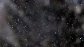 Close up view of snow falling in front of trees out of focus stock footage
