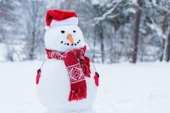 Close up view of snowman in santa hat, scarf and mittens i winter park Royalty Free Stock Photos