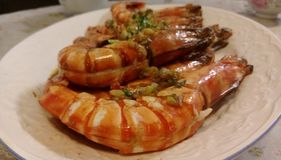 Shrimps. Close-up view of some fried big and delicious shrimps with garlic and green onion in a plate Royalty Free Stock Image