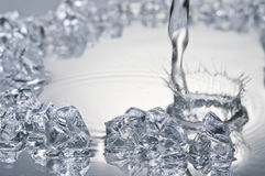 Close up view of some ice pieces and water Royalty Free Stock Image
