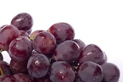 Red wine grapes. Close up view of some red wine grapes isolated on a white background royalty free stock images