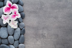 Close up view of spa theme objects on grey background Royalty Free Stock Photography