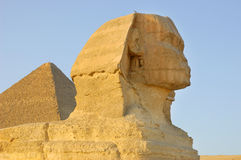 Close-up view of Sphinx Stock Photo