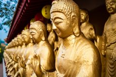 Close-up view of statues of golden standing Buddha at Fo Guang S stock photography
