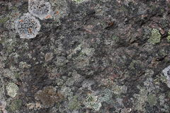 Close up view of stone Stock Image