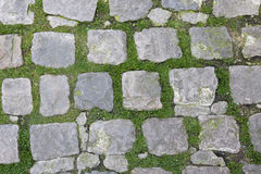 Close-up view of Stone Path with grass growing through stock images