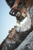 Close-up view on strong lumberjack use chainsaw and sawing a big tree on sawmill. Vertical stock photos