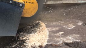 Close up view of a stump grinder. stock footage