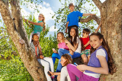Close-up view of teens on the tree with mobiles. Close-up view of teens on the tree holding smart phones in the park during beautiful summer day Royalty Free Stock Images