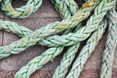 Close up view of thick, green ship rope Royalty Free Stock Image