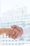 Close up view of two business people shaking hands Royalty Free Stock Images