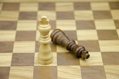 A close-up view of two chess kings Stock Photography