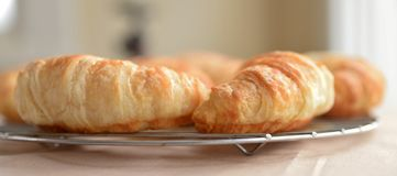 Close-up View of Two Croissants Cooling. Royalty Free Stock Images