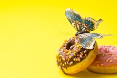 Close up view of two donuts on yellow background with copyspace stock photography