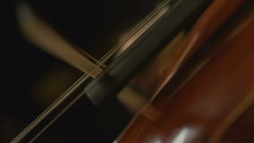 Close-up view on violoncello in orchestra stock video